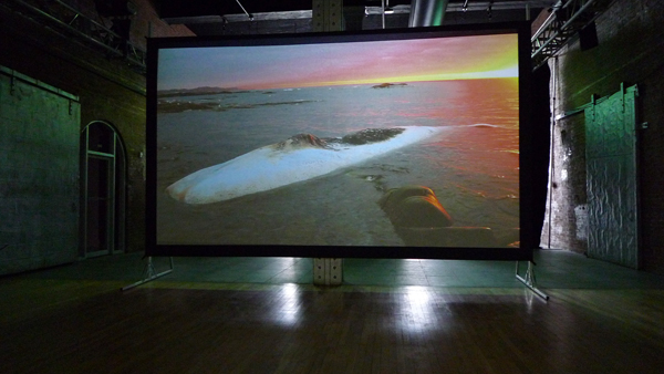 Patti Chang, Invocation for a Wandering Lake, part I, 2014, HD video, 11 min., installation view, Moving Image, March 6-8, 2014. Courtesy of Creative Capital. Photo  by the author.